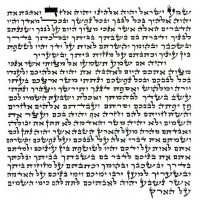 Basic Kosher Mezuzah Scroll